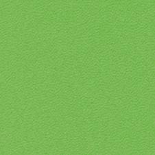 ROMA farve: lyse-grøn (VP0907)